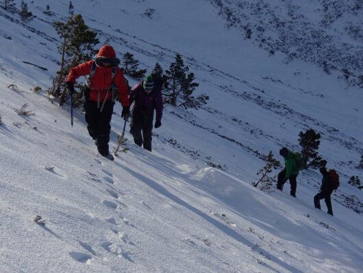 Winter Hill Skills